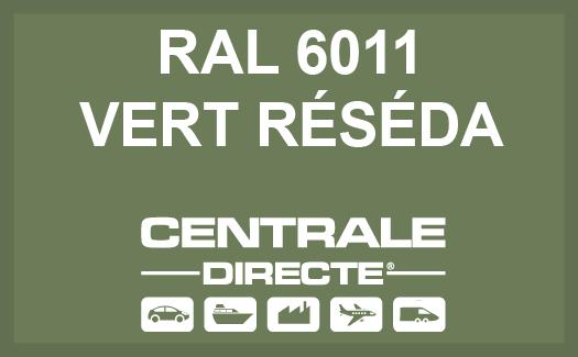 Couleur RAL 6011 Vert réséda