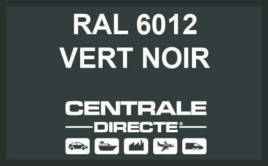 Couleur RAL 6012 Vert noir