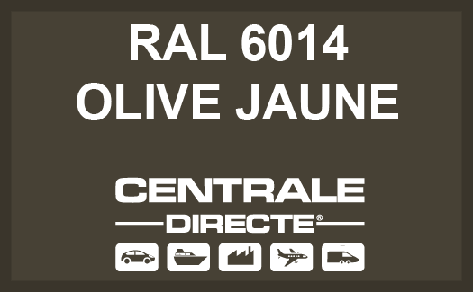 Couleur RAL 6014 Olive jaune