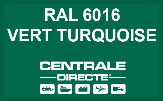 Couleur RAL 6016 Vert turquoise