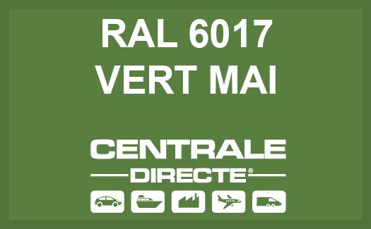 Couleur RAL 6017 Vert mai