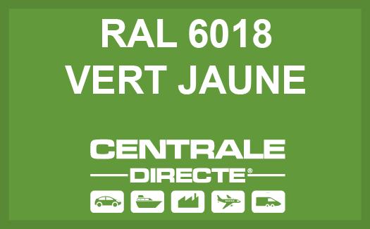 Couleur RAL 6018 Vert jaune