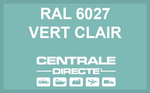 Couleur RAL 6027 Vert clair
