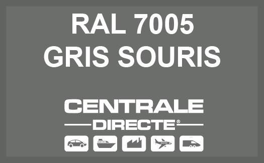 Couleur RAL 7005 Gris souris