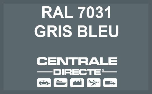 Couleur RAL 7031 Gris bleu