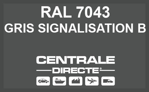 Couleur RAL 7043 Gris signalisation B