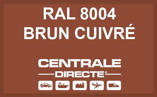 Couleur RAL 8004 Brun cuivré