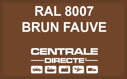 Couleur RAL 8007 Brun fauve