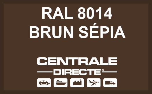 Couleur RAL 8014 Brun sépia