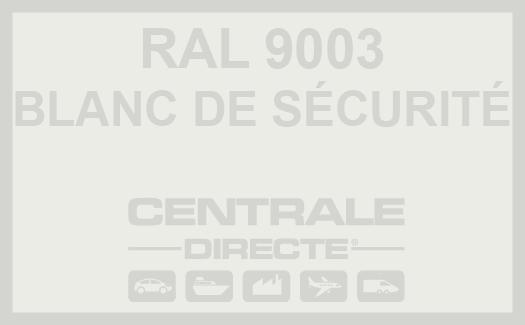 Couleur RAL 9003 Blanc de sécurité