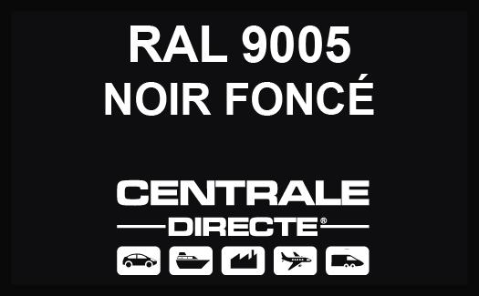 Couleur RAL 9005 Noir foncé