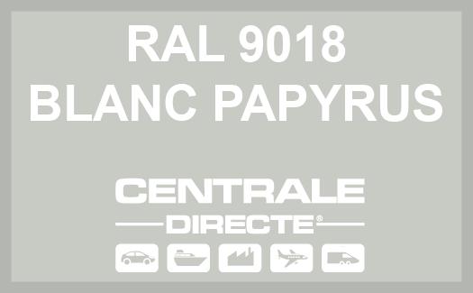 Couleur RAL 9018 Blanc papyrus