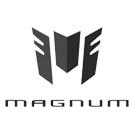 Peinture Magnum teinte constructeur