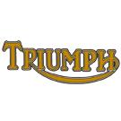 Peinture moto triumph